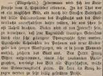 Hochwasser 1881 - Inserat Foto