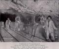 Pferdebetrieb im Weissensteintunnel