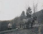 Personen und Pferde