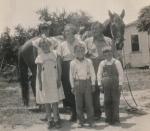 Sechs Personen mit Pferd